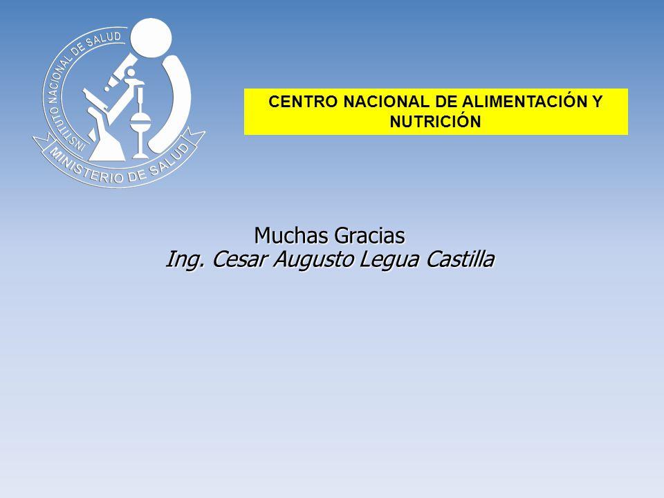 Muchas Gracias Ing. Cesar Augusto Legua Castilla CENTRO NACIONAL DE ALIMENTACIÓN Y NUTRICIÓN