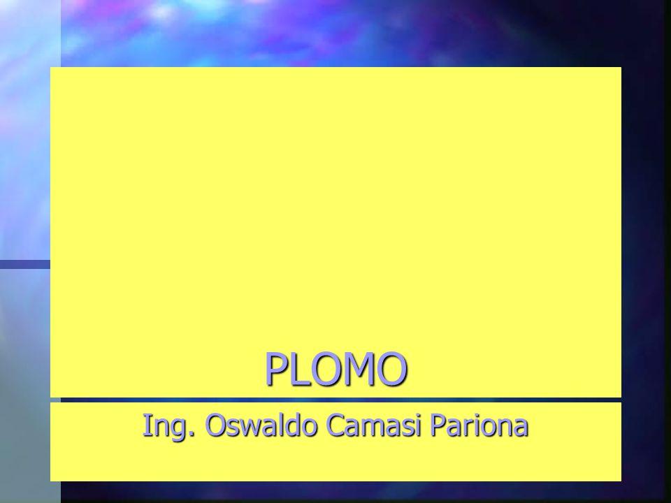 PLOMO Ing. Oswaldo Camasi Pariona