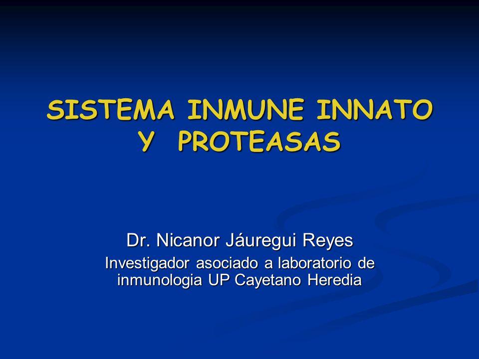 SISTEMA INMUNE INNATO Y PROTEASAS SISTEMA INMUNE INNATO Y PROTEASAS Dr. Nicanor Jáuregui Reyes Investigador asociado a laboratorio de inmunologia UP C