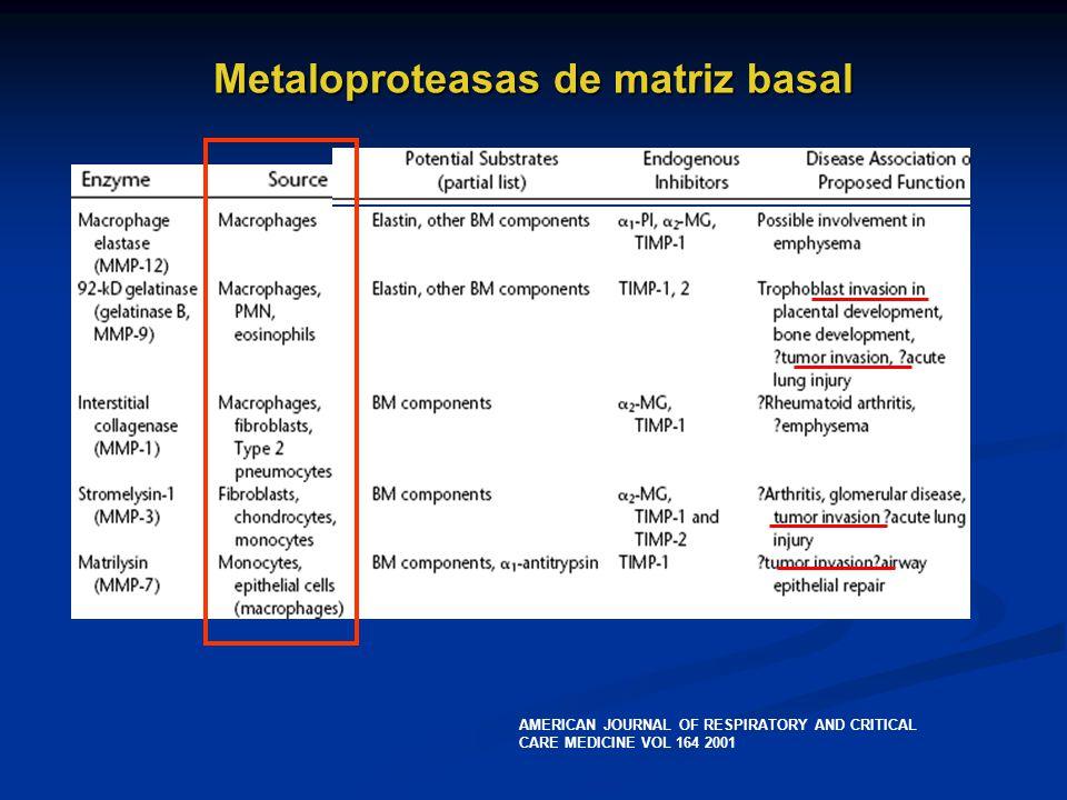 Metaloproteasas de matriz basal AMERICAN JOURNAL OF RESPIRATORY AND CRITICAL CARE MEDICINE VOL 164 2001