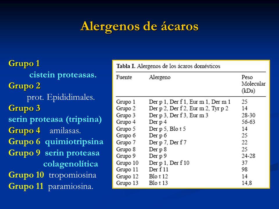 Alergenos de ácaros Grupo 1 cistein proteasas. Grupo 2 prot. Epididimales. Grupo 3 serin proteasa (tripsina) Grupo 4 Grupo 4 amilasas. Grupo 6 quimiot
