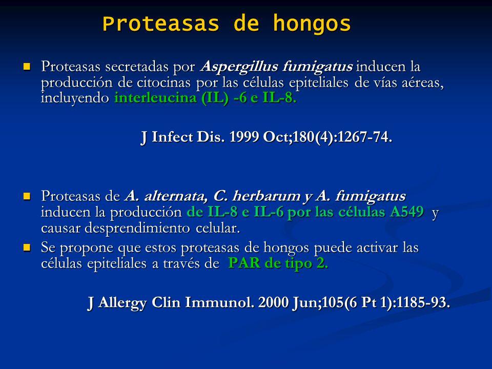 Proteasas de hongos Proteasas secretadas por Aspergillus fumigatus inducen la producción de citocinas por las células epiteliales de vías aéreas, incl
