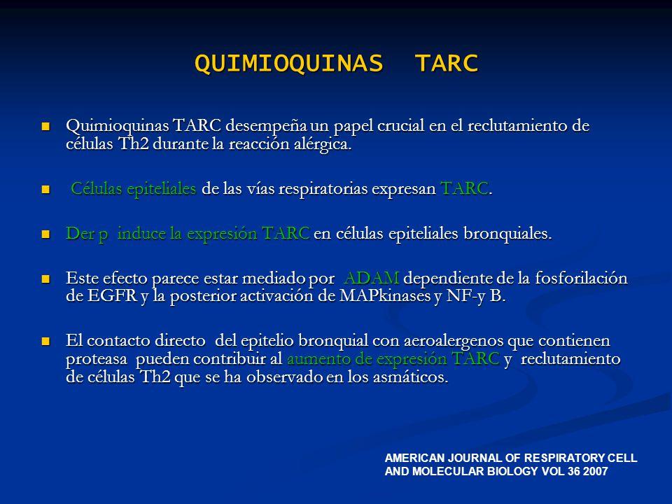 QUIMIOQUINAS TARC Quimioquinas TARC desempeña un papel crucial en el reclutamiento de células Th2 durante la reacción alérgica. Quimioquinas TARC dese