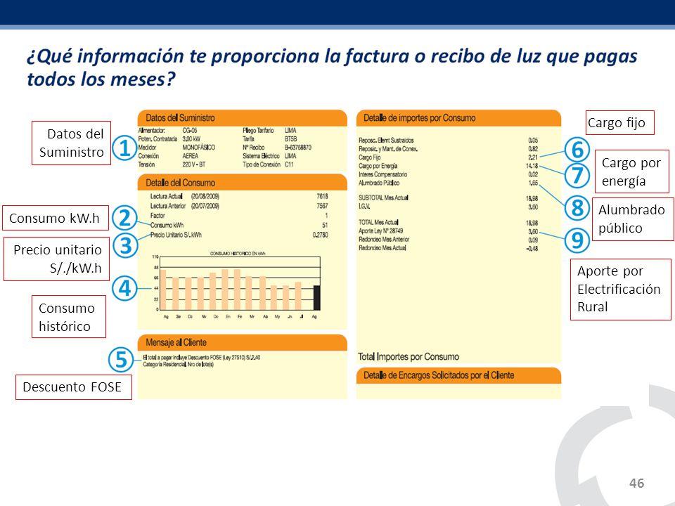 46 Datos del Suministro Consumo kW.h Precio unitario S/./kW.h Consumo histórico Descuento FOSE Cargo fijo Cargo por energía Alumbrado público Aporte p