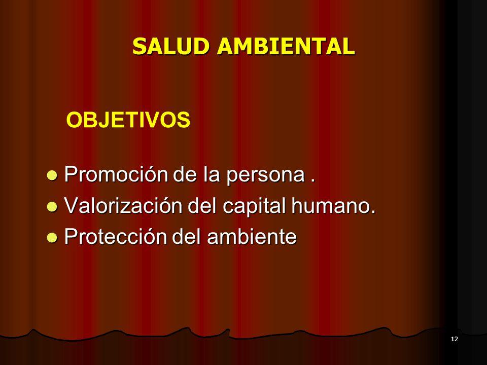 12 SALUD AMBIENTAL Promoción de la persona. Promoción de la persona. Valorización del capital humano. Valorización del capital humano. Protección del