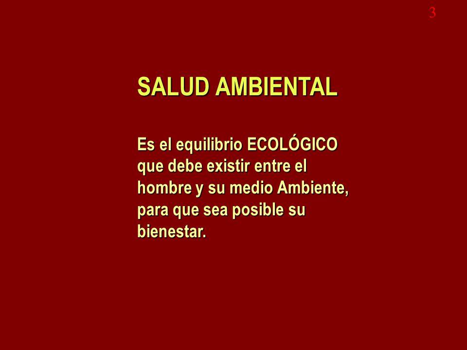3 SALUD AMBIENTAL Es el equilibrio ECOLÓGICO que debe existir entre el hombre y su medio Ambiente, para que sea posible su bienestar.