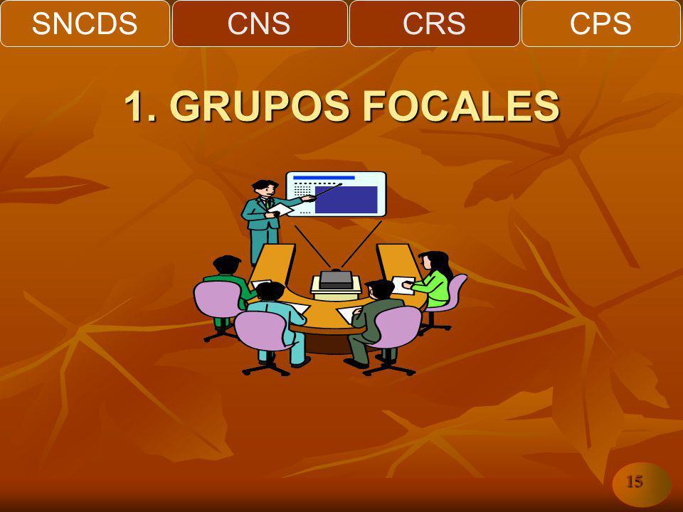 SNCDSCNSCRSCPS 15 1. GRUPOS FOCALES