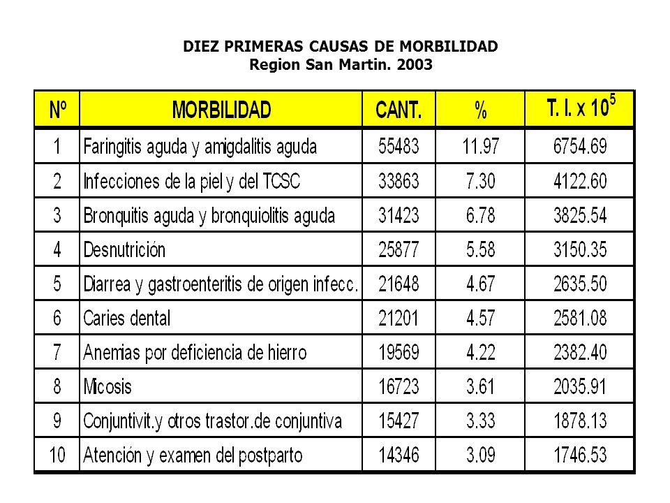DIEZ PRIMERAS CAUSAS DE MORBILIDAD Region San Martin. 2003