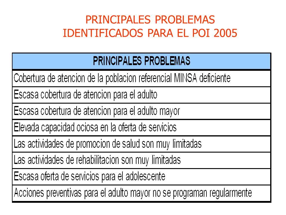 PRINCIPALES PROBLEMAS IDENTIFICADOS PARA EL POI 2005