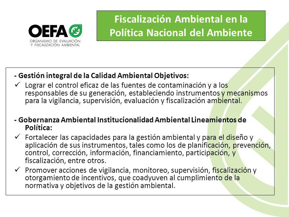 Fiscalización Ambiental en el Sector Electricidad