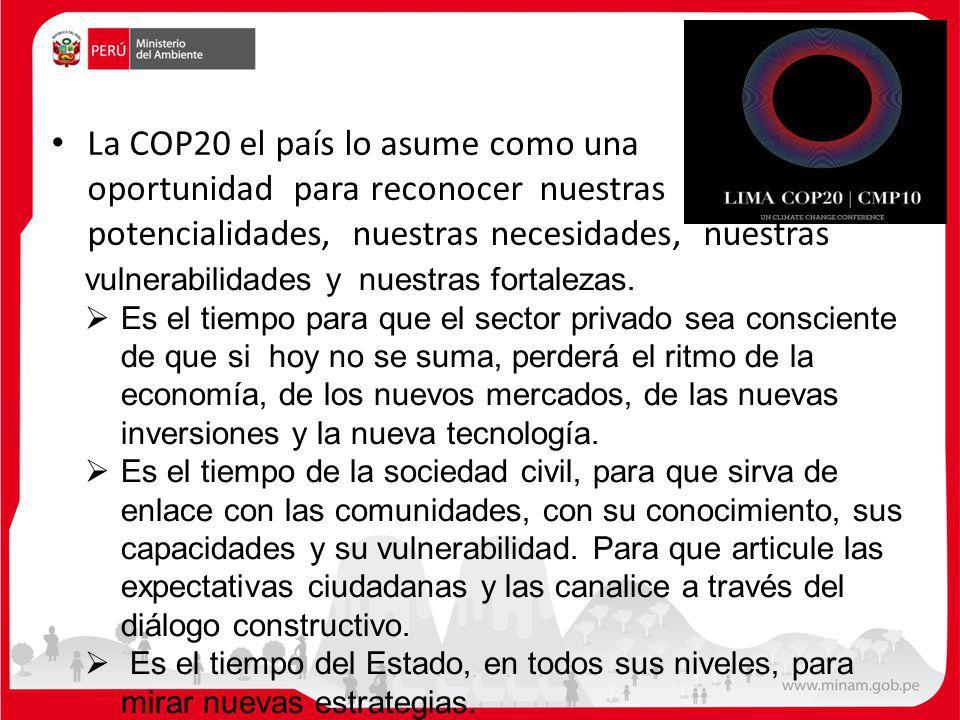 La COP20 el país lo asume como una oportunidad para reconocer nuestras potencialidades, nuestras necesidades, nuestras vulnerabilidades y nuestras fortalezas.