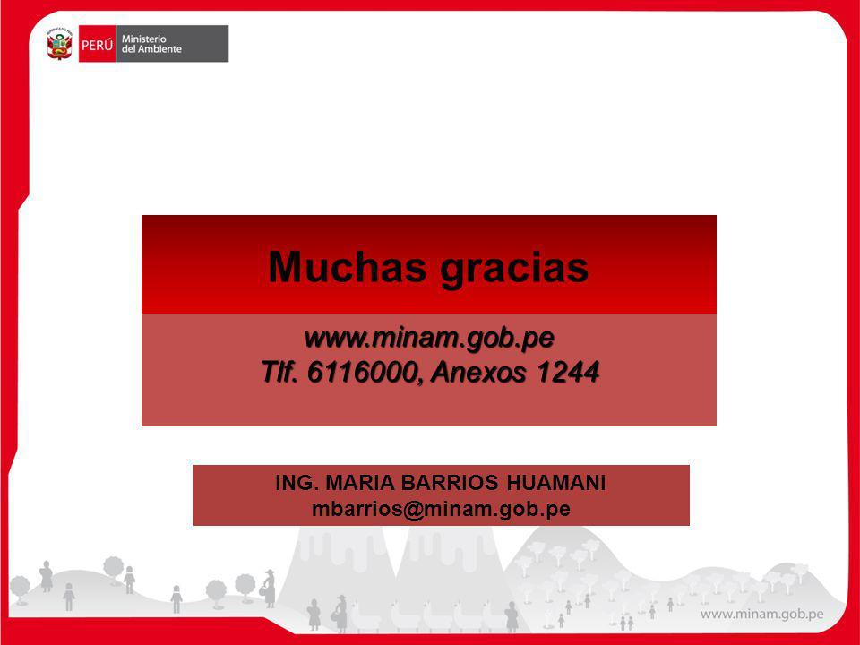 Muchas graciaswww.minam.gob.pe Tlf. 6116000, Anexos 1244 ING. MARIA BARRIOS HUAMANI mbarrios@minam.gob.pe