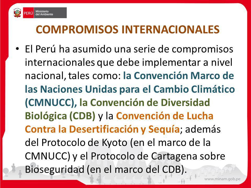 COMPROMISOS INTERNACIONALES El Perú ha asumido una serie de compromisos internacionales que debe implementar a nivel nacional, tales como: la Convención Marco de las Naciones Unidas para el Cambio Climático (CMNUCC), la Convención de Diversidad Biológica (CDB) y la Convención de Lucha Contra la Desertificación y Sequía; además del Protocolo de Kyoto (en el marco de la CMNUCC) y el Protocolo de Cartagena sobre Bioseguridad (en el marco del CDB).