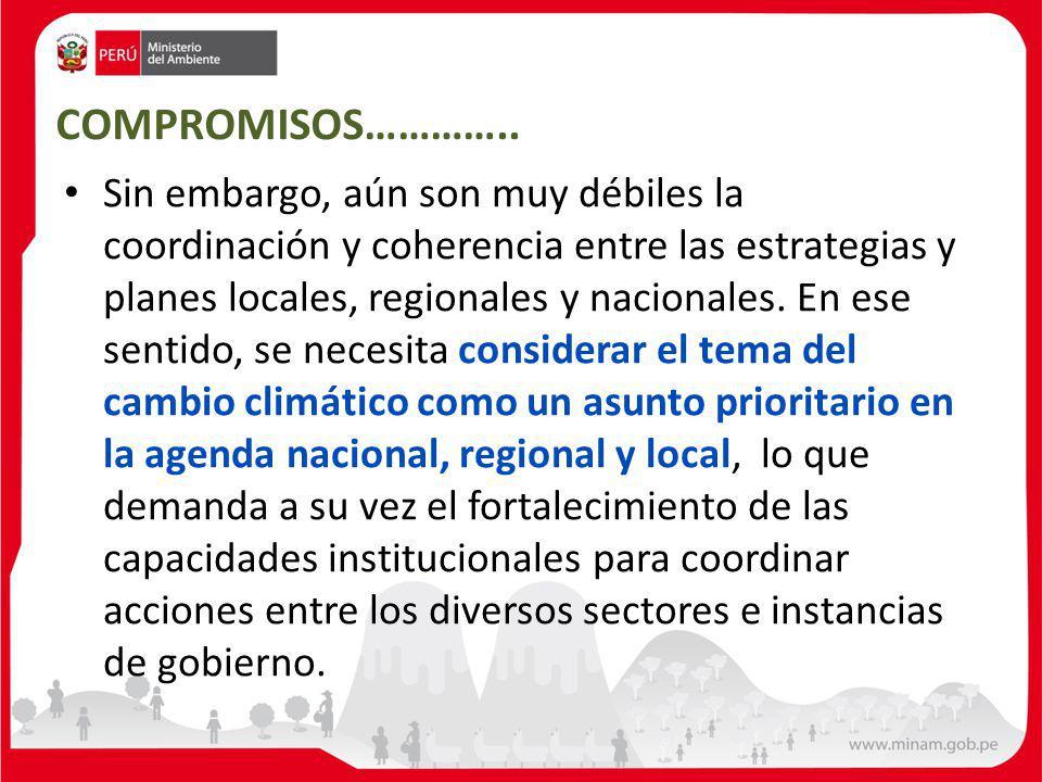 Sin embargo, aún son muy débiles la coordinación y coherencia entre las estrategias y planes locales, regionales y nacionales.