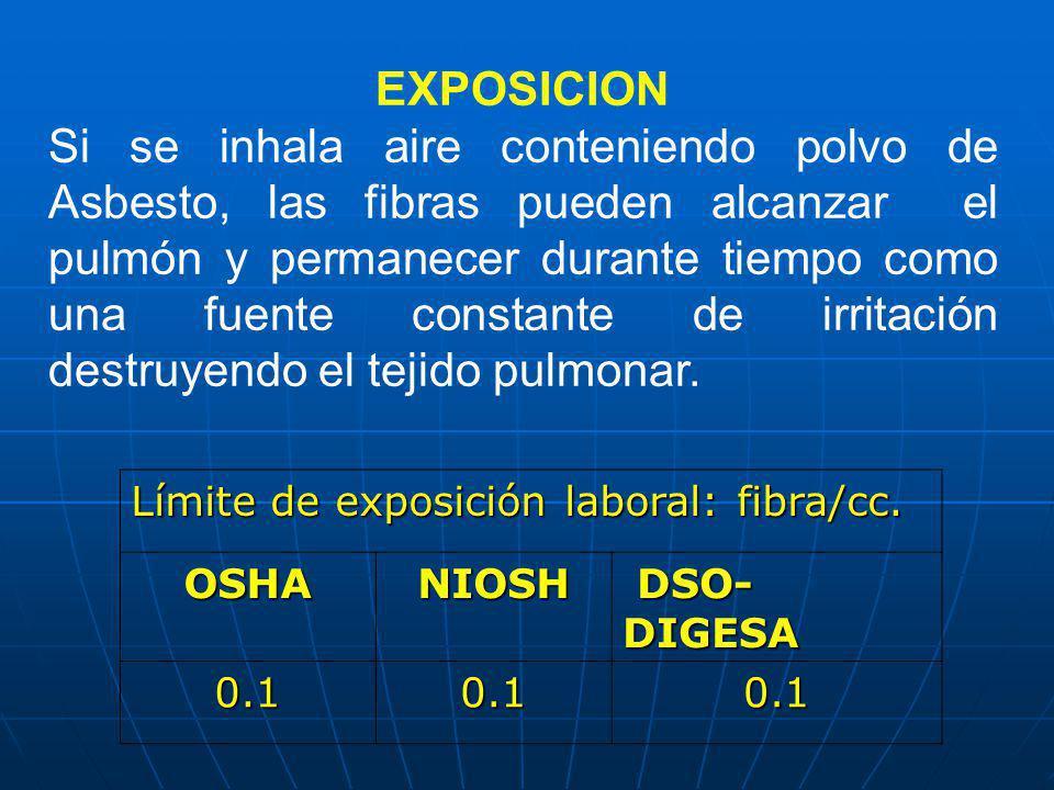 EXPOSICION Si se inhala aire conteniendo polvo de Asbesto, las fibras pueden alcanzar el pulmón y permanecer durante tiempo como una fuente constante