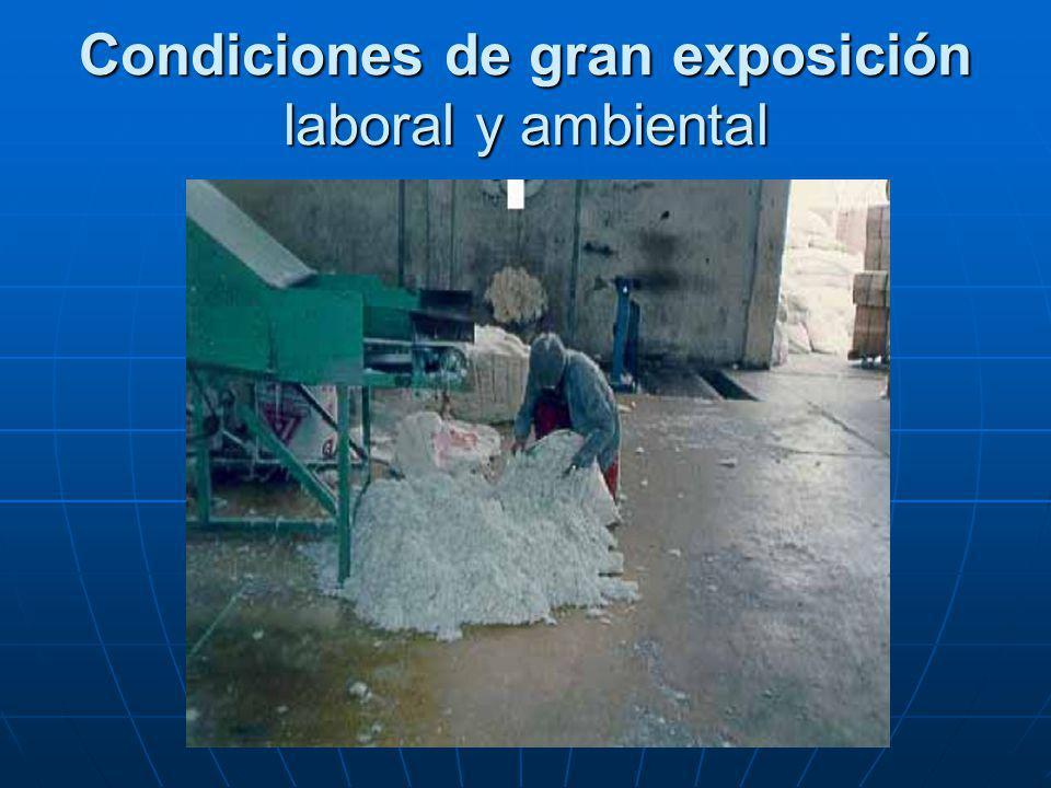 Condiciones de gran exposición laboral y ambiental