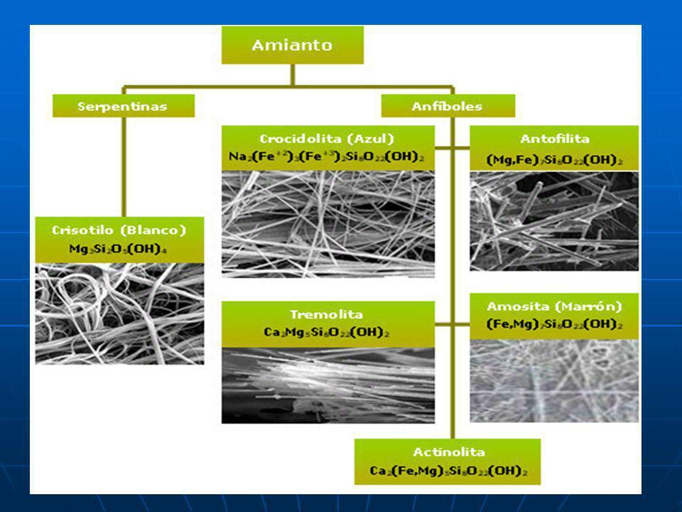 TIPOS COMUNES DE ASBESTO Crisotilo (Asbesto Blanco) Amosita (Asbestos Marrón) Crocidolita (Asbesto azul)