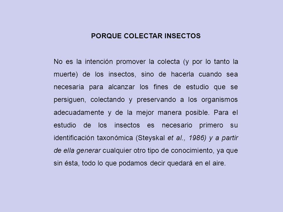 Preservación de insectos La preservación consiste en mantener a los ejemplares colectados en las mejores condiciones posibles para su estudio.