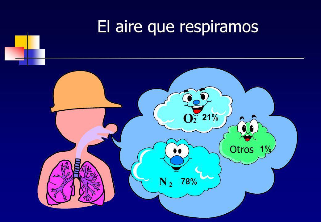 El aire que respiramos N 2 78% O 2 21% 1% Otros