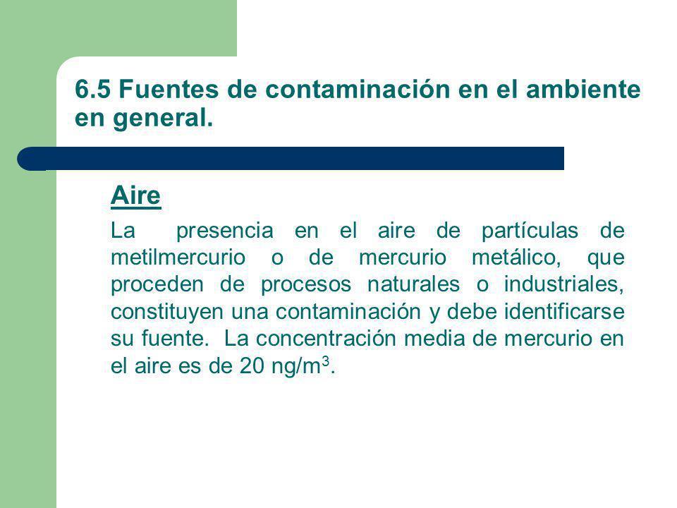 6.5 Fuentes de contaminación en el ambiente en general. Aire La presencia en el aire de partículas de metilmercurio o de mercurio metálico, que proced