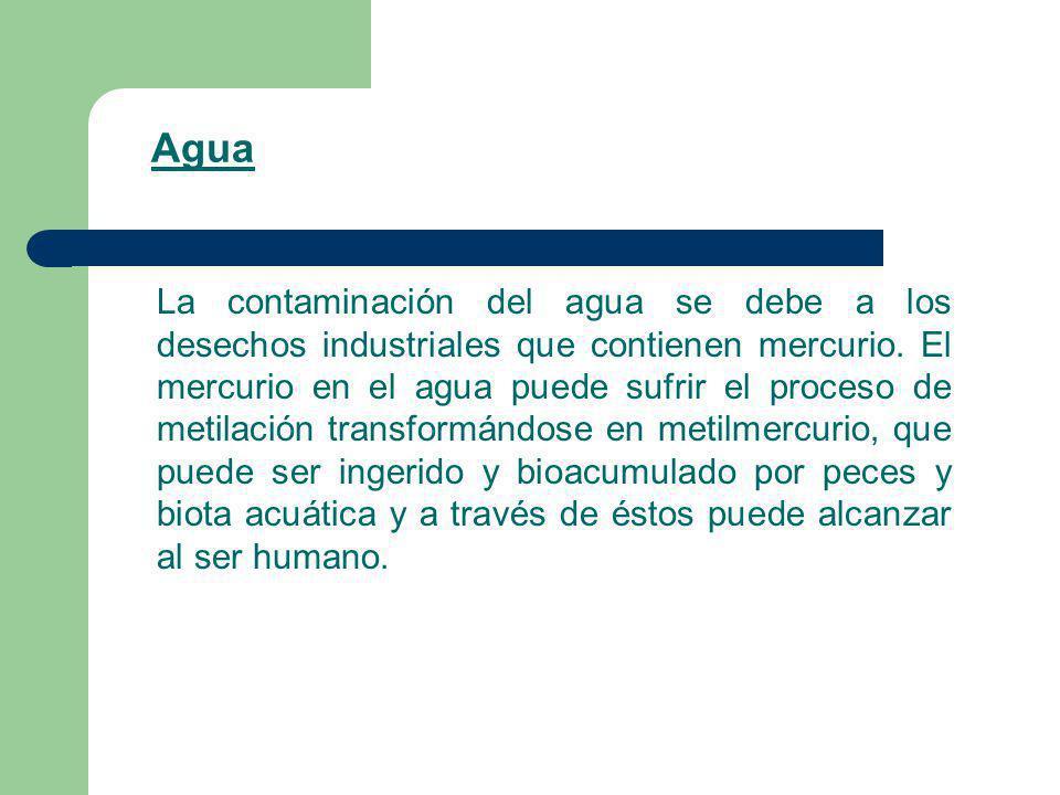 Agua La contaminación del agua se debe a los desechos industriales que contienen mercurio. El mercurio en el agua puede sufrir el proceso de metilació