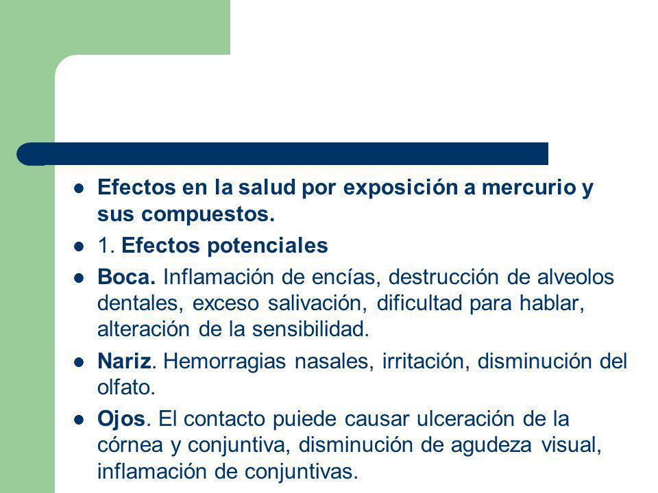 Efectos en la salud por exposición a mercurio y sus compuestos. 1. Efectos potenciales Boca. Inflamación de encías, destrucción de alveolos dentales,