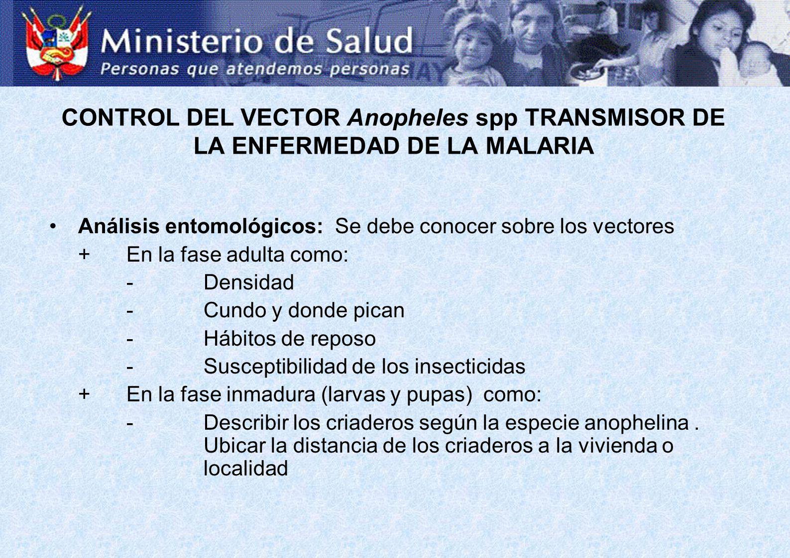 Análisis entomológicos: Se debe conocer sobre los vectores +En la fase adulta como: -Densidad -Cundo y donde pican -Hábitos de reposo -Susceptibilidad