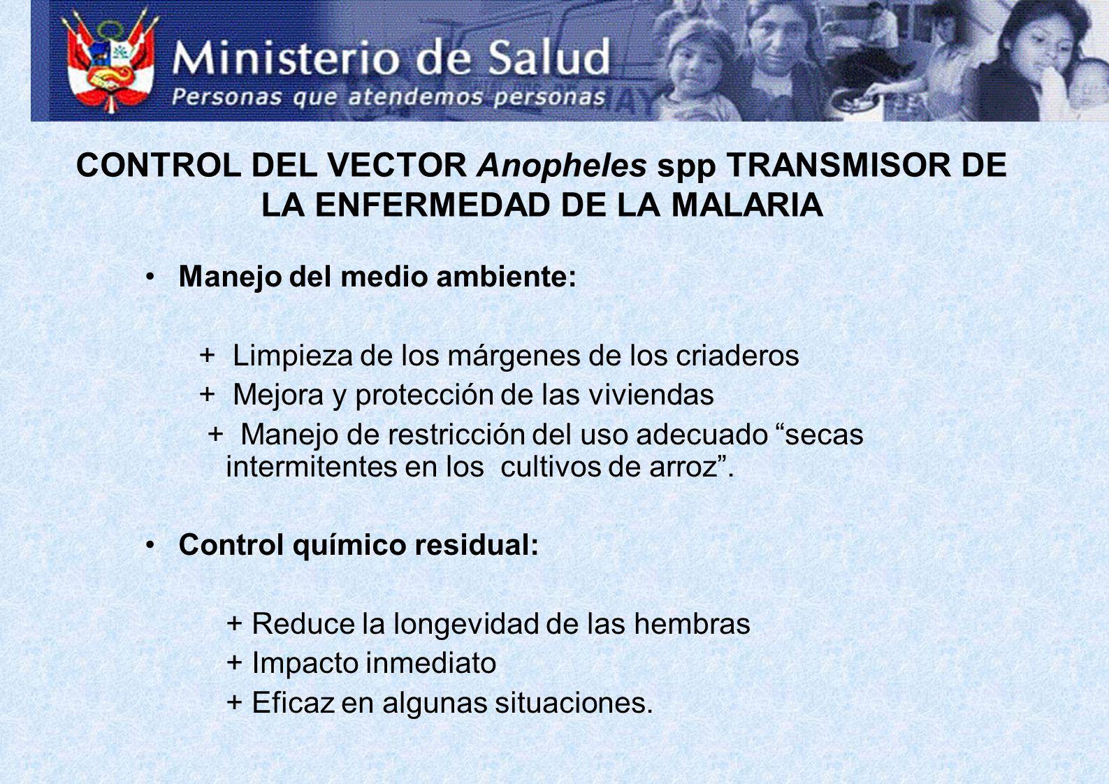 CONTROL DEL VECTOR Anopheles spp TRANSMISOR DE LA ENFERMEDAD DE LA MALARIA Manejo del medio ambiente: + Limpieza de los márgenes de los criaderos + Me