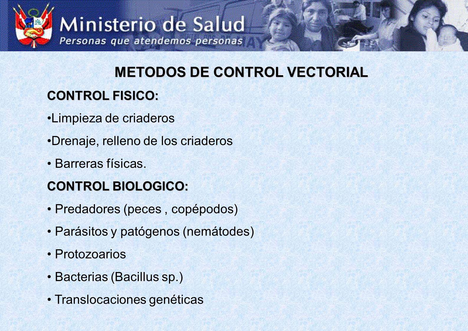 METODOS DE CONTROL VECTORIAL CONTROL FISICO: Limpieza de criaderos Drenaje, relleno de los criaderos Barreras físicas. CONTROL BIOLOGICO: Predadores (