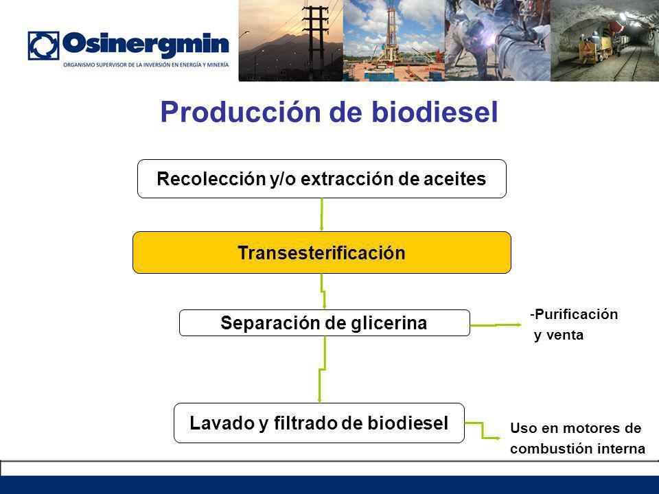Producción de biodiesel Transesterificación Separación de glicerina Lavado y filtrado de biodiesel Recolección y/o extracción de aceites -Purificación y venta Uso en motores de combustión interna