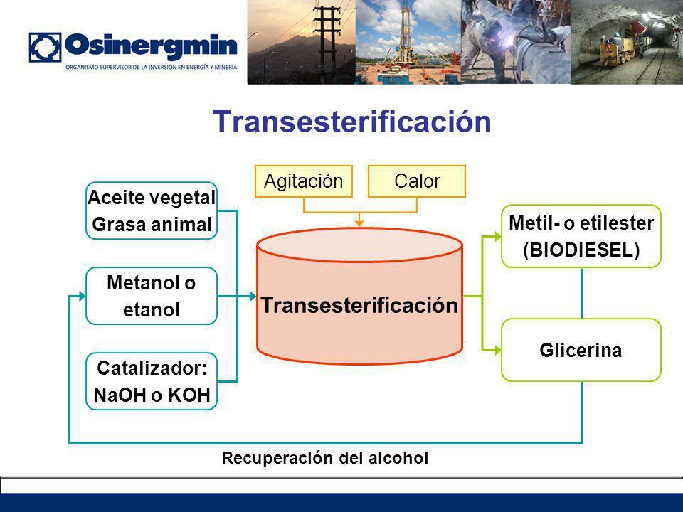 Recuperación del alcohol Transesterificación Aceite vegetal Grasa animal Metanol o etanol Catalizador: NaOH o KOH Metil- o etilester (BIODIESEL) Glicerina AgitaciónCalor