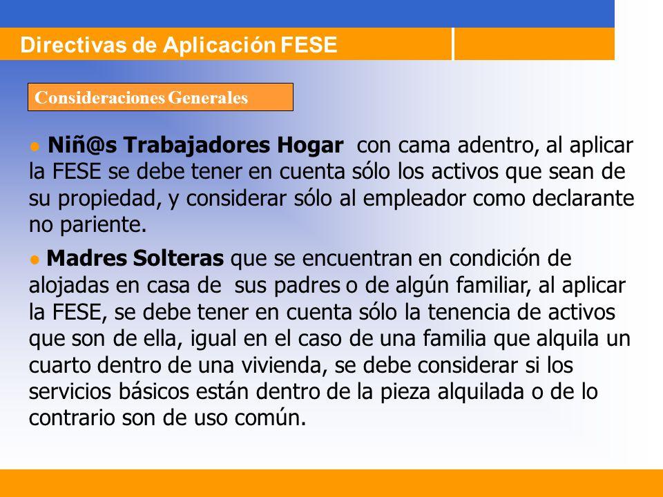 Niñ@s Trabajadores Hogar con cama adentro, al aplicar la FESE se debe tener en cuenta sólo los activos que sean de su propiedad, y considerar sólo al