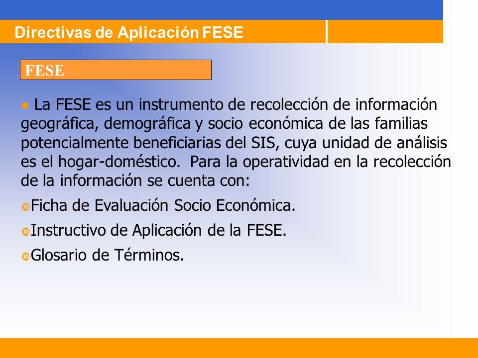 La FESE es un instrumento de recolección de información geográfica, demográfica y socio económica de las familias potencialmente beneficiarias del SIS