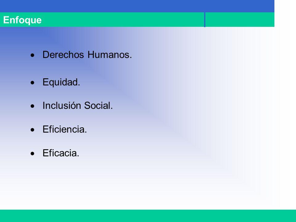 Enfoque Derechos Humanos. Equidad. Inclusión Social. Eficiencia. Eficacia.