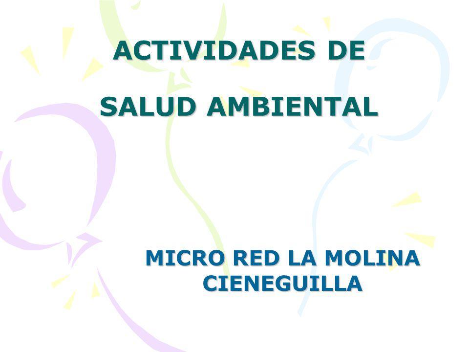 ACTIVIDADES DE SALUD AMBIENTAL MICRO RED LA MOLINA CIENEGUILLA