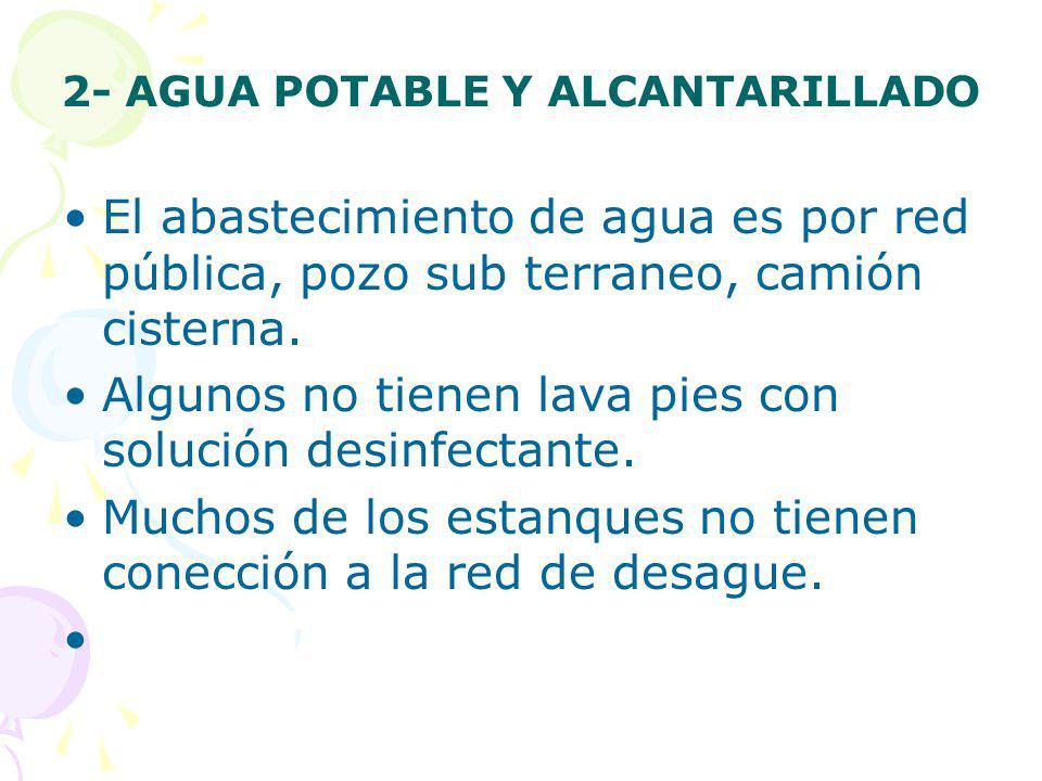 2- AGUA POTABLE Y ALCANTARILLADO El abastecimiento de agua es por red pública, pozo sub terraneo, camión cisterna. Algunos no tienen lava pies con sol