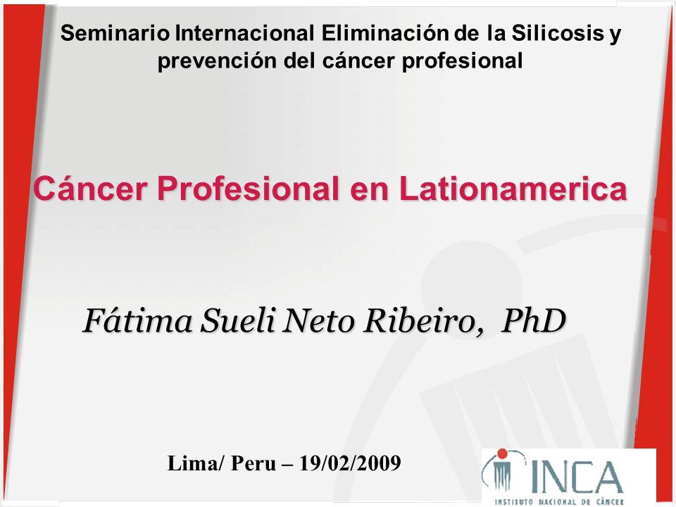 Seminario Internacional Eliminación de la Silicosis y prevención del cáncer profesional Cáncer Profesional en Lationamerica Lima/ Peru – 19/02/2009 Fátima Sueli Neto Ribeiro, PhD