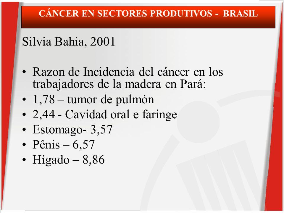 Silvia Bahia, 2001 Razon de Incidencia del cáncer en los trabajadores de la madera en Pará: 1,78 – tumor de pulmón 2,44 - Cavidad oral e faringe Estomago- 3,57 Pênis – 6,57 Hígado – 8,86 CÁNCER EN SECTORES PRODUTIVOS - BRASIL