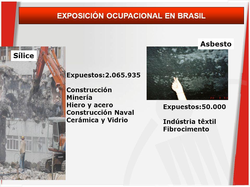 Sílice Expuestos:2.065.935 Construcción Minería Hiero y acero Construcción Naval Cerámica y Vidrio Asbesto Expuestos:50.000 Indústria têxtil Fibrocimento EXPOSICIÓN OCUPACIONAL EN BRASIL