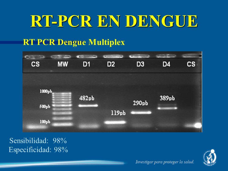 RT PCR Dengue Multiplex RT-PCR EN DENGUE Sensibilidad: 98% Especificidad: 98%