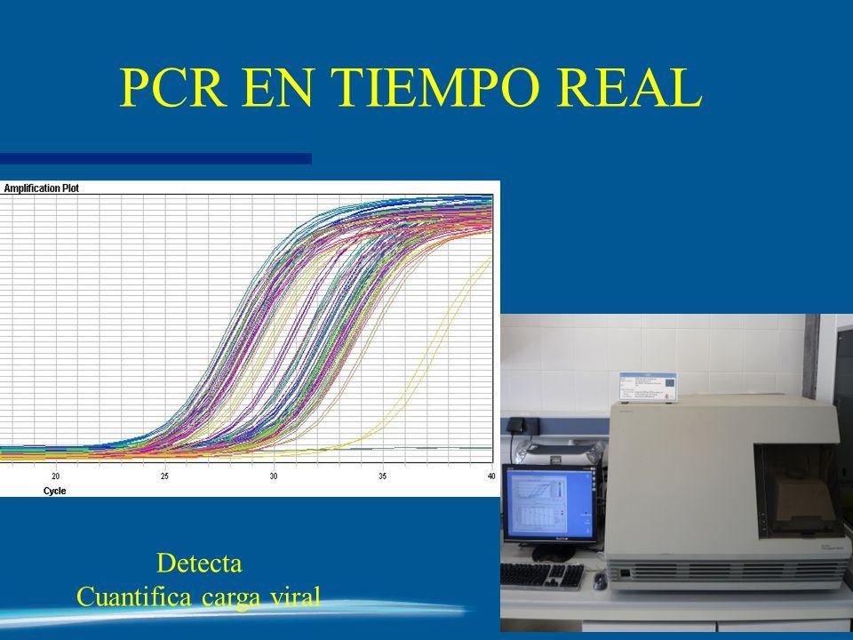 Detecta Cuantifica carga viral PCR EN TIEMPO REAL