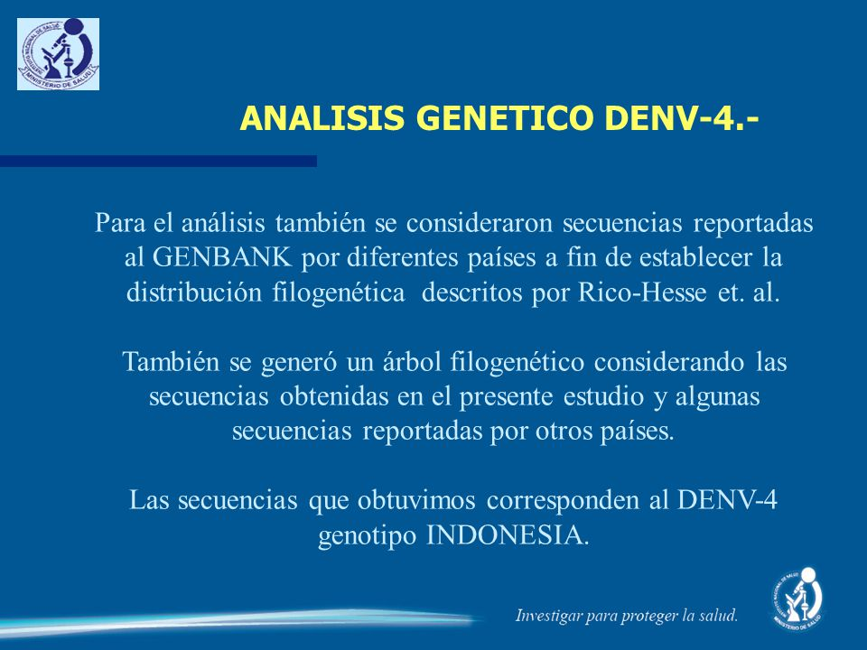ANALISIS GENETICO DENV-4.- Para el análisis también se consideraron secuencias reportadas al GENBANK por diferentes países a fin de establecer la dist