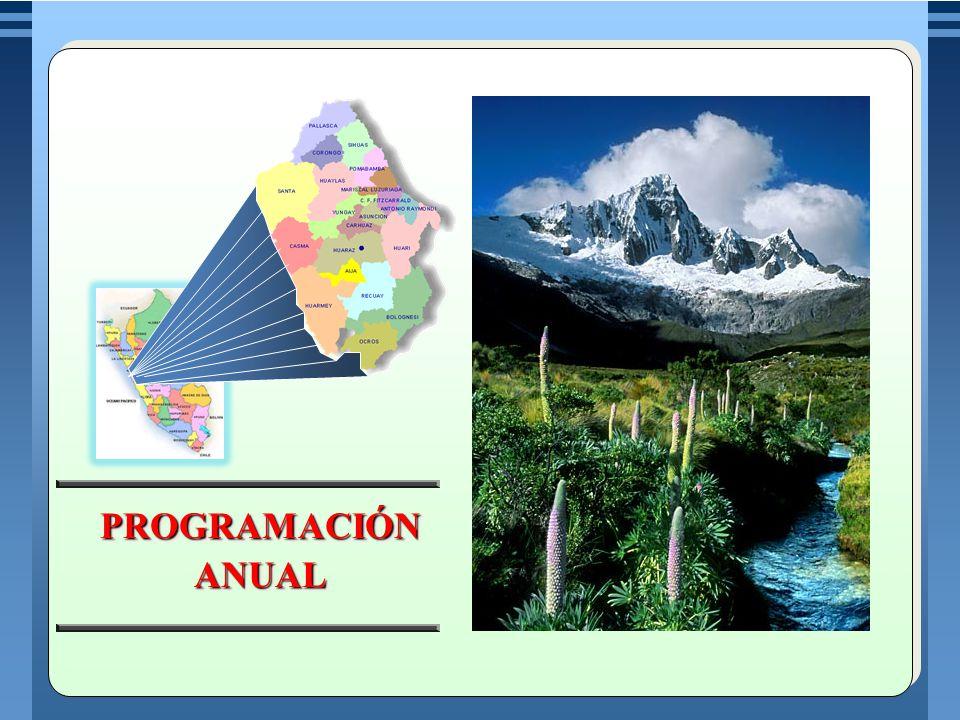 Es un documento técnico pedagógico en el cual se explicita las capacidades, conocimientos y actitudes, organizados en unidades didácticas que se desarrollaran durante el año escolar.