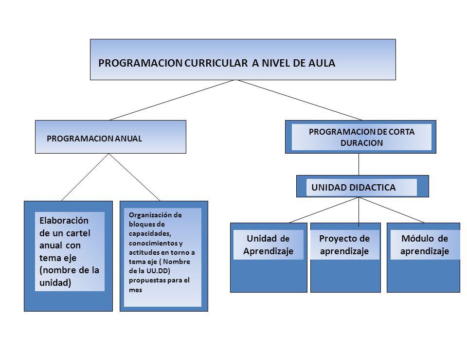 PROGRAMACION CURRICULAR A NIVEL DE AULA PROGRAMACION ANUAL PROGRAMACION DE CORTA DURACION Elaboración de un cartel anual con tema eje (nombre de la un