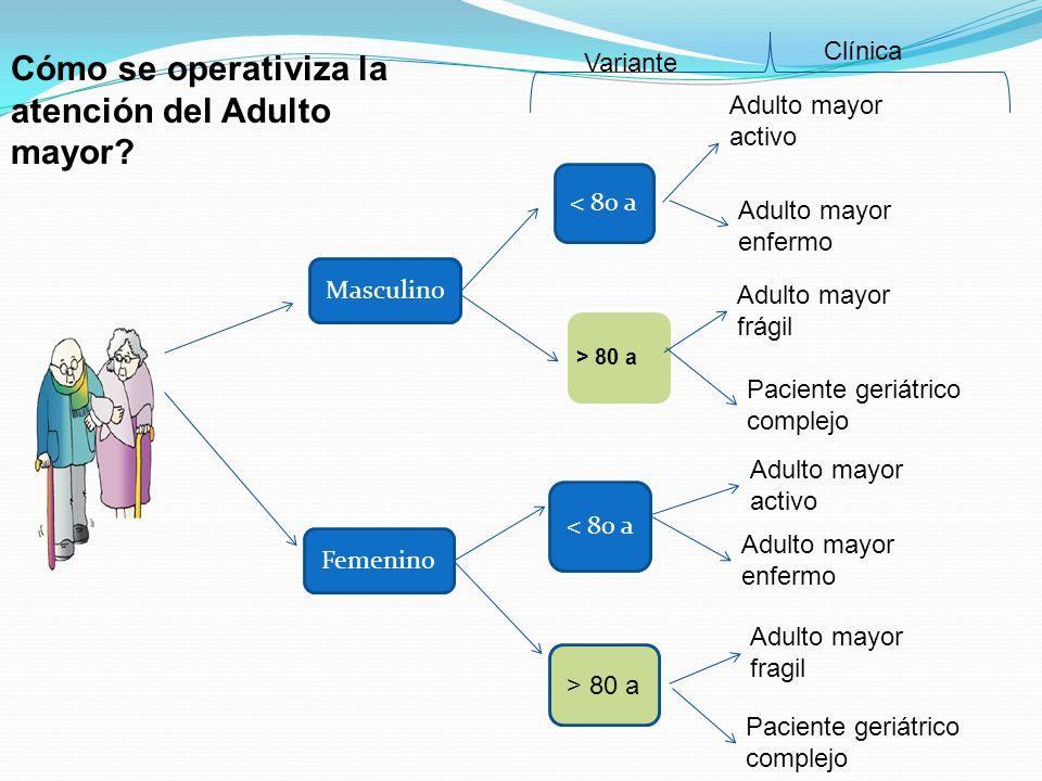 Masculino Femenino Adulto mayor activo Adulto mayor enfermo Adulto mayor frágil Adulto mayor enfermo > 80 a Adulto mayor activo Paciente geriátrico co