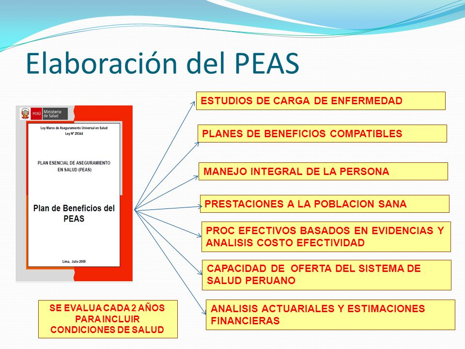 ESTUDIOS DE CARGA DE ENFERMEDAD PLANES DE BENEFICIOS COMPATIBLES MANEJO INTEGRAL DE LA PERSONA PRESTACIONES A LA POBLACION SANA PROC EFECTIVOS BASADOS