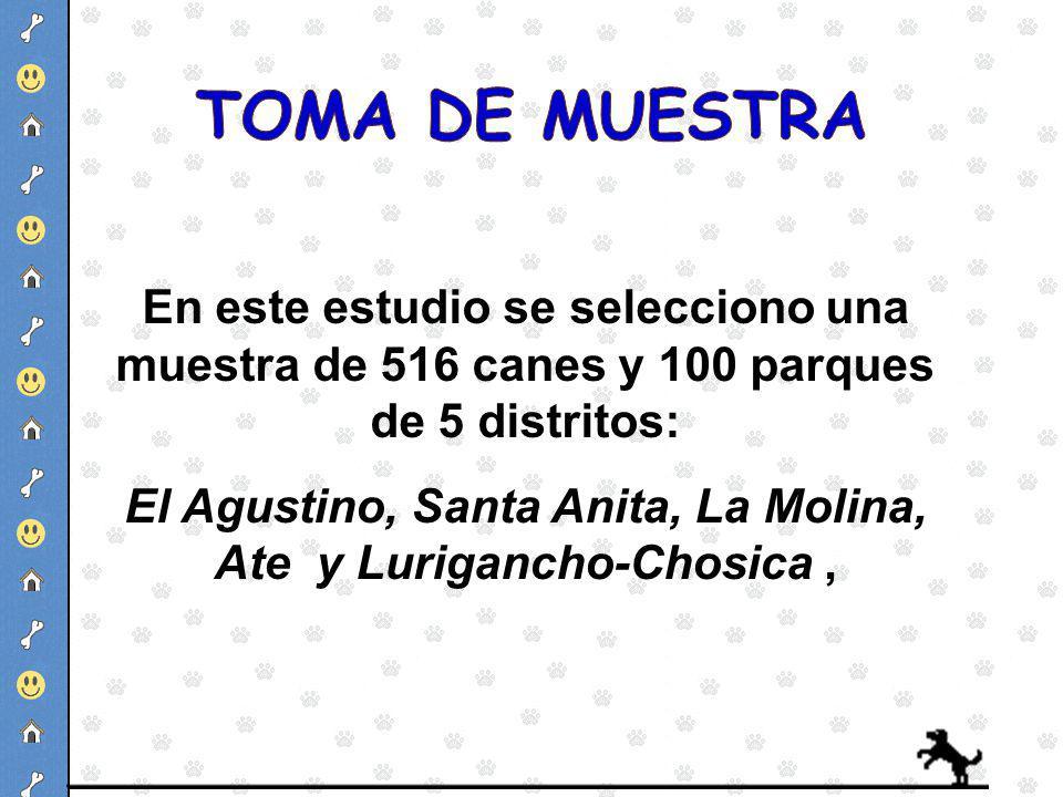En este estudio se selecciono una muestra de 516 canes y 100 parques de 5 distritos: El Agustino, Santa Anita, La Molina, Ate y Lurigancho-Chosica,