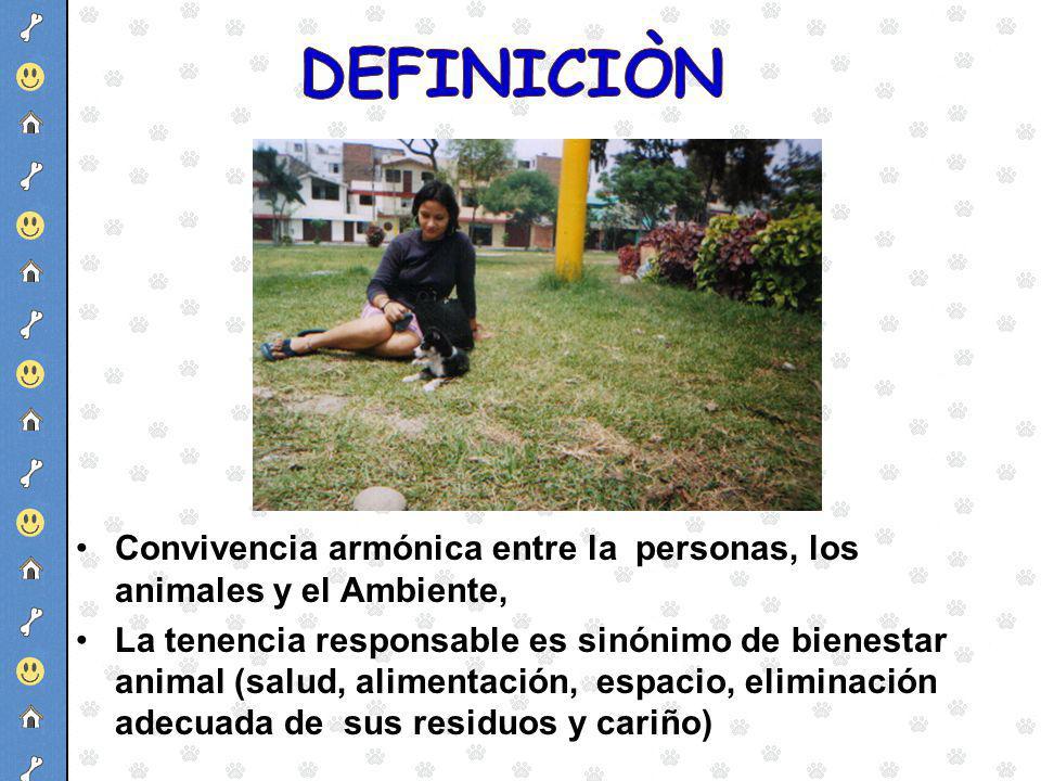 Convivencia armónica entre la personas, los animales y el Ambiente, La tenencia responsable es sinónimo de bienestar animal (salud, alimentación, espa