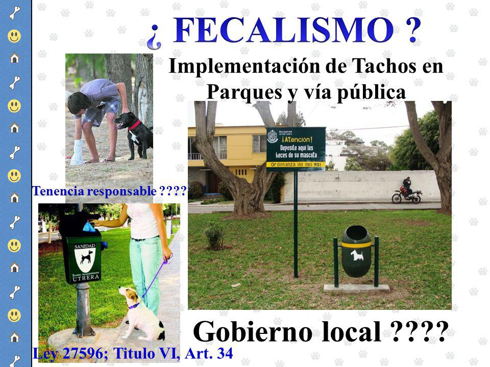 Implementación de Tachos en Parques y vía pública Ley 27596; Titulo VI, Art. 34