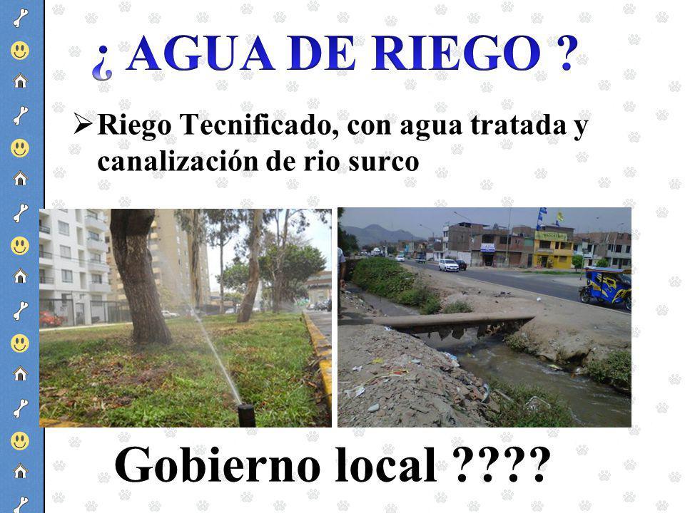 Riego Tecnificado, con agua tratada y canalización de rio surco